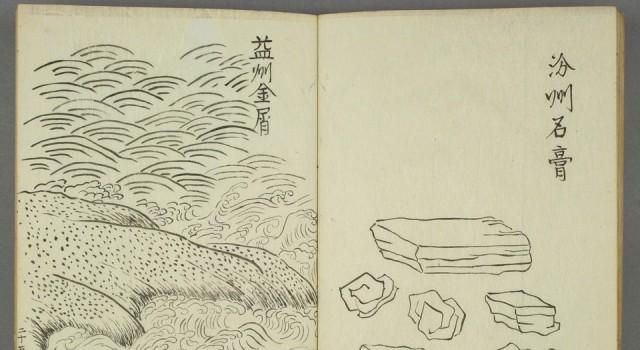 绍兴本草图画