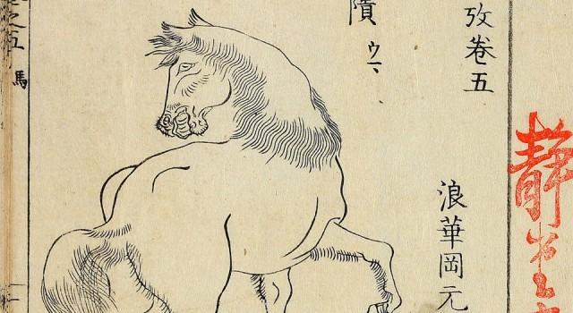 毛诗品物图考