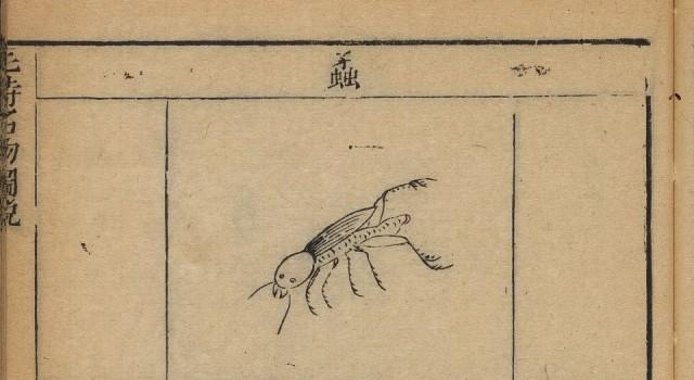 毛诗名物图说
