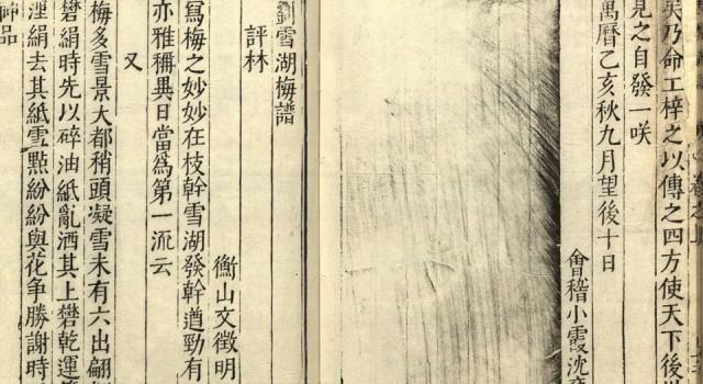 刘雪湖梅谱