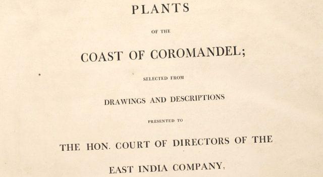 科罗曼德海岸植物图谱
