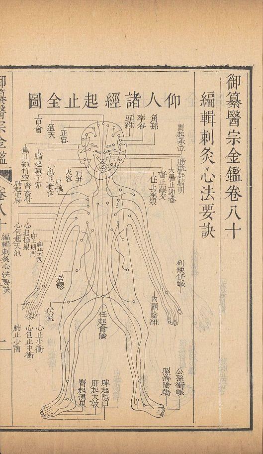 yi-zong-jin-jian10