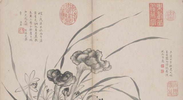 花卉虫草册
