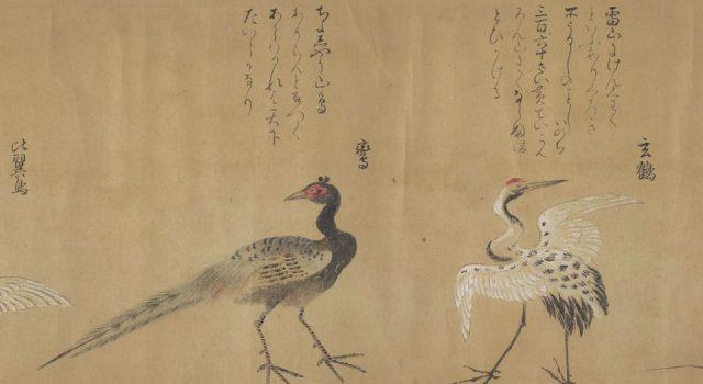 怪奇鸟兽图卷