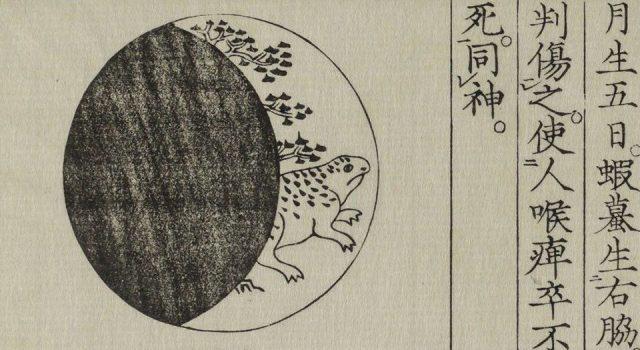 黄帝蝦蟇经