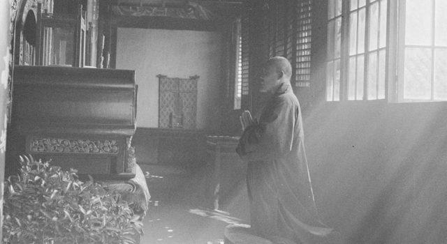 赫达·莫里逊的摄影集